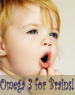 Flax Omega 3 for Brain Development